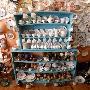 Types of Hoarding collectors1 300x300