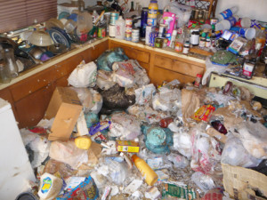 Hoarder house kitchen before cleanup