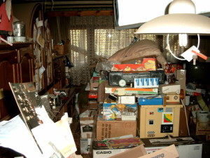 Types of Hoarding shopping 300x225