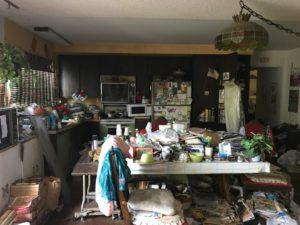 Flea Infested Hoarded Home